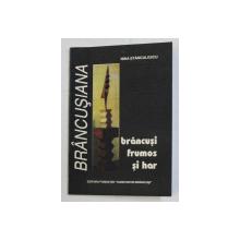 BRANCUSI FRUMOS SI HAR , INTAIA CARTE de NINA STANCULESCU , 1997 DEDICATIE*