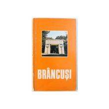 BRANCUSI par DAN GRIGORESCU , EDITIE IN LIMBA FRANCEZA , 1977