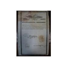 Brevet de mester croitor Mitu P. 1846