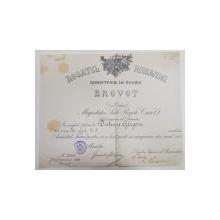 BREVET PENTRU MEDALIA ' AVANTUL TARII ' , ACORDAT CAPITANULUI DUTESCU GRIGORE PENTRU CAMPANIA DIN 1913 , DATAT 1914