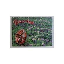 BUCOVINA - OUA INCONDEIATE , ALBUM IN ROMANA - ENGLEZA - FRANCEZA - SPANIOLA - ITALIANA - JAPONEZA  de CORINA FIRUTA , 2004