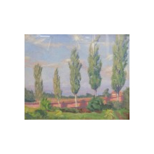 G. M. Cantacuzino, Peisaj cu plopi