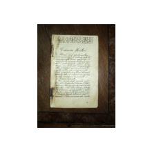 Caiet manuscris, Craiasa florilor Stelian Raducanu