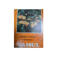 CAISUL - VASILE COCIU, BUC.1993