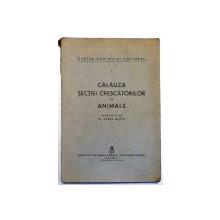 CALAUZA SECTIEI CRESCATORILOR DE ANIMALE de AUREL MUTIU