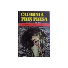 CALOMNIA IN PRESA de DORU PAVEL si CORNELIU TURIANU , 1996
