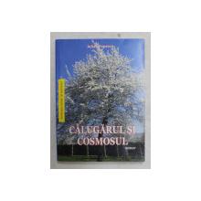 CALUGARUL SI COSMOSU-  roman  de IULIAN POPESCU , 2019