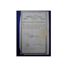 Campulung Muscel, Departamentul Vistieriei Patent negustor Nita M, 1846