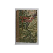 CATUNUL URSILOR de N. MINEI si O , MANITIU , ilustratii de A. IONESCU - IASI , 1953, COTORUL INTARIT CU BANDA ADEZIVA , URME DE UZURA *