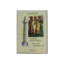 CAUTA SI VEI AFLA , SINAXAR TRANSILVAN ED. a - IV - a de P. I. DAVID , 1998