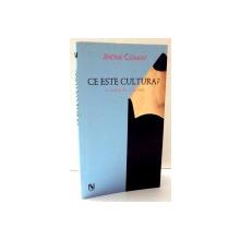 CE ESTE CULTURA? de JEROME CLEMENT , 2005