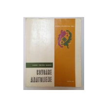 COVOARE ANATOLIENE , CATALOG de ANDREI KERTESZ BADRUS , 1978
