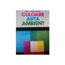 CULOARE,ARTA,AMBIENT-PAUL CONSTANTIN,1979