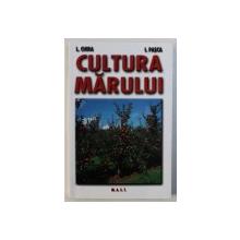 CULTURA MARULUI de L. CHIRA si I. PASCA , 2008
