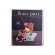 DELICES GLACES - PLAISIRS GOURMANDS par CORINNE CESANO , 2011