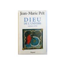 DIEU DE L ' UNIVERS  -SCIENCE ET FOI par JEAN  - MARIE PELT , 1995