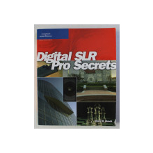 DIGITAL SLR PRO SECRETS by DAVID D. BUSCH , 2006
