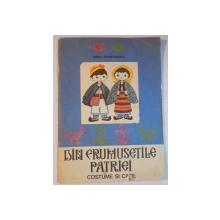 DIN FRUMUSETILE PATRIEI , COSTUME SI CASE de IRINA APOSTOLOIU , VOL II , 1973