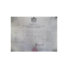 Diploma Regala Carol I, Bucuresti 1897