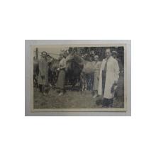 DOMNI SI DOAMNE LA HERGHELIE DE CAI , FOTOGRAFIE MONOCROMA, , PE HARTIE MATA , DATATA 1932