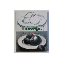 DRAWING FOR BEGINNERS by FRANCISCO ASENSIO CERVER , 2005