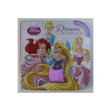 DREAMS DO COME TRUE ! - SERIA DISNEY PRINCESS - TOUCH AND FEEL , 2013