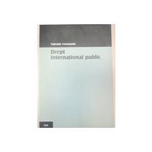 DREPT INTERNATIONAL PUBLIC - VALENTIN CONSTATIN  2004
