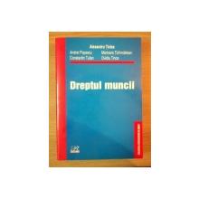 DREPTUL MUNCII de AL. TICLEA , A. POPESCU , C-TIN TUFAN , M. TICHINDELEAN , OVIDIU TINCA , 2004