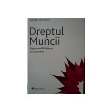 DREPTUL MUNCII-NICOLAE VOICULESCU,2007