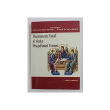 DUMNEZEU - TATAL SI VIATA PREASFINTEI TREIMI DE PR . PROF . DR . STEFAN BUCHIU , PR . ASIST . DR . SORIN SELARU , 2010