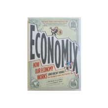 ECONOMIX - HOW  OUR ECONOMY WORKS ( AND DOESN ' T WORK ) IN WORKS AND PICTURE by  MICHAEL GOODWIN , illustrated by DAN E. E . BURR , 2012