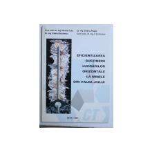 EFICIENTIZAREA  SUSTINERII LUCRARILOR ORIZONTALE LA MINELE DIN VALEA JIULUI de NICOLAE LETU ...C-TIN SEMEN , 2001