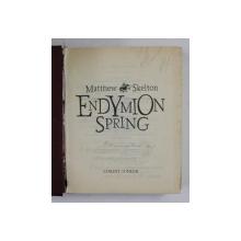 ENDYMION SPRING , TRECUTUL ESTE O FIARA PERICULOASA de MATTHEW SKELTON , 2007