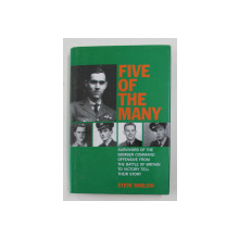 FIVE OF THE MANY by STEVE DARLOW , 2007