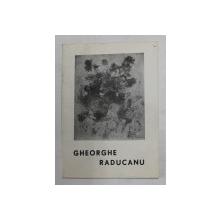 GHEORGHE RADUCANU , CATALOG DE EXPOZITIE , FEBRUARIE - MARTIE , SALA GALERIILOR DE ARTA , 1969
