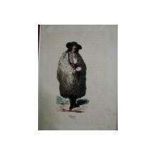 GRAVURA COLORATA-CIOBAN 1850