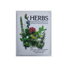HERBS by ROGER PHILLIPS & NICK FOY , 1990