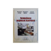 INCERCARILE MASINILOR ELECTRICE de MARGARETA COJAN , ALECSANDRU SIMION , LEONARD LIVADARU , 2006