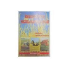 INDRUMATOR PENTRU CULTURA PLANTELOR DE CAMP de GHEORGHE SIN , 2001