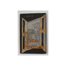 INIMI ZBUCIUMATE de I. PELTZ , coperta de TIA PELTZ , 1962 , DEDICATIE *