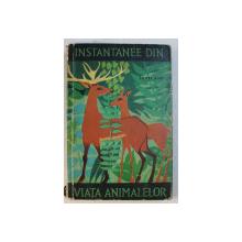 INSTANTANEE DIN VIATA ANIMALELOR de IONEL POP , 1964 , DEDICATIE *