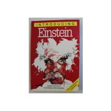 INTRODUCING EINSTEIN by JOSEPH SCHWARTZ and MICHAEL McGUINNESS , 1999