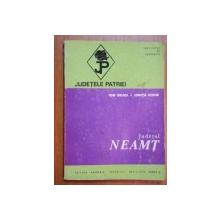 JUDETELE PATRIEI:JUDETUL NEAMT-ION BOJOI,IONITA ICHIM  1974