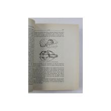 LA VIE DES MAMMIFERES ET DES HOMMES FOSSILES de HENRY SANIELEVICI, BUC. 1926