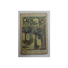 LACUL CU ELEFANTI de MIHAI TICAN RUMANO ,1930