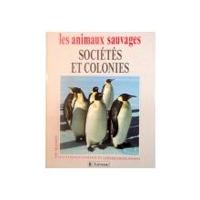 LES ANIMAUX SAUVAGES, SOCIETES ET COLONIES de LAURE FLAVIGNY, CATHERINE NICOLLE, 1993