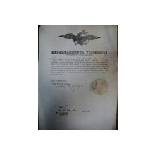 Magura, jud. Prahova, Brevet pentru cautator de aur pe numele Dobre Iorga 1847