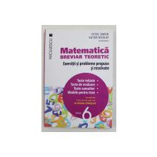 MATEMATICA , BREVIAR TEORETIC - EXERCITII SI PROBLEME PROPUSE SI REZOLVATE , coordonatori PETRE SIMION si VICTOR NICOLAE , CLASA 6  , 2016