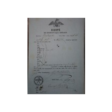 Mehadia, bilet export vite pentru negustorul Petre Dachei? prin punctul Borgorova, 1855