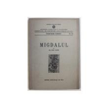 MIGDALUL de COCIU VASILE , 1954
